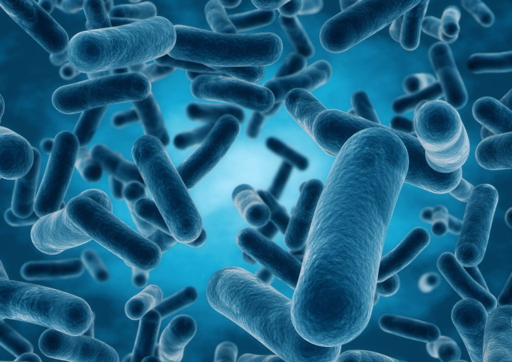 Bakterier_vira